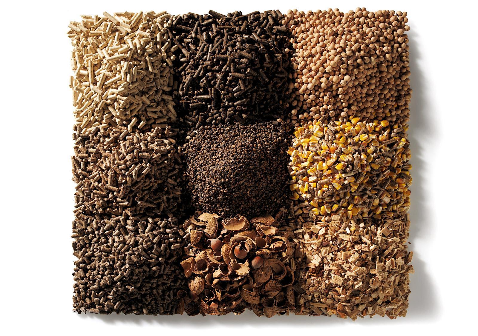 Biomassa stufe a biomassa termostufe e caldaie cs thermos for Caldaia biomassa usata